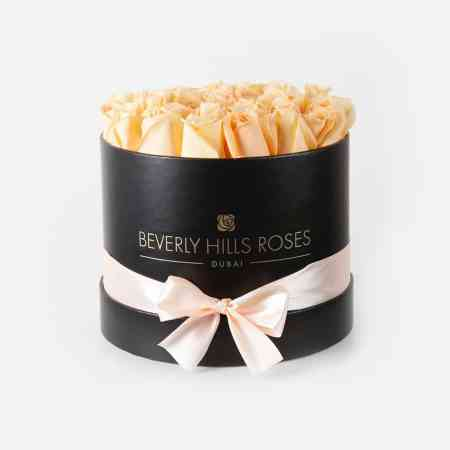 Medium black rose box in prosecco