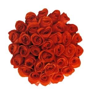 "Flower Delivery Abu Dhabi "" Sunset"" in Medium Black Rose Box"