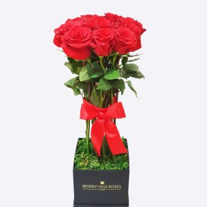 12 Premium Red roses bouquet in a box