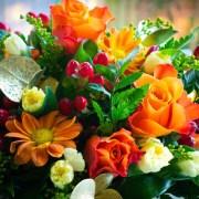 Fresh Flowers Abu Dhabi