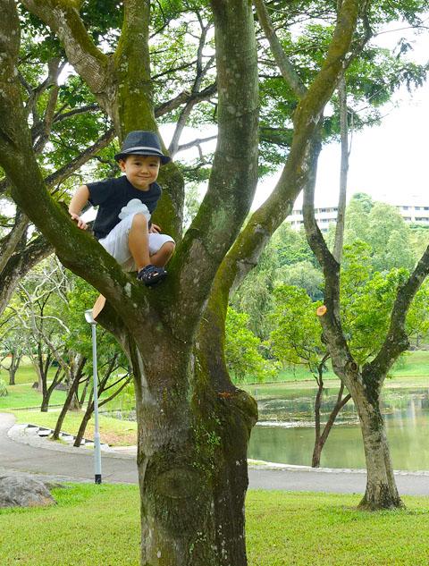 Grub bishan park