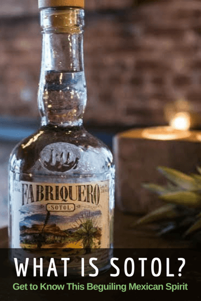 A detailed look at sotol, Mexico's lesser-known spirit that's gaining in popularity.