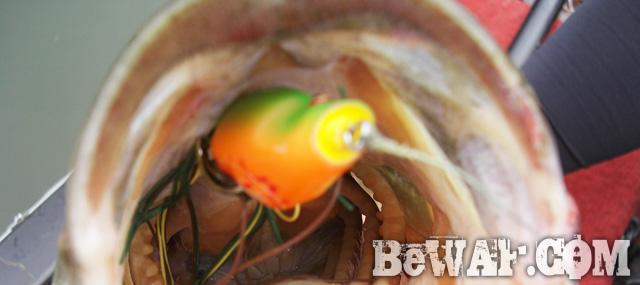 biwako bass fishing guide chouka 25