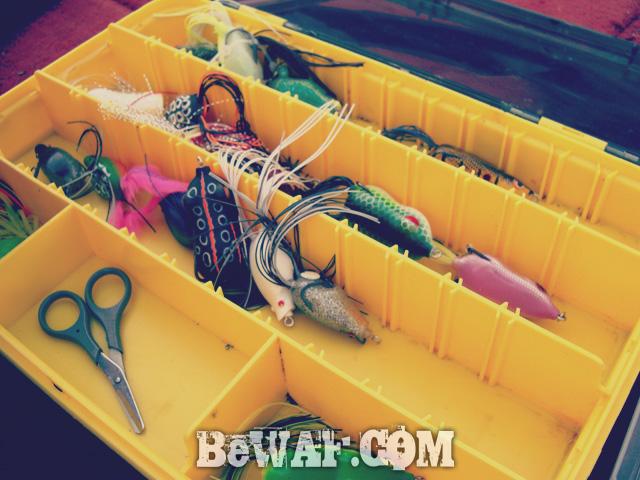 biwako bass fishing guide chouka 3