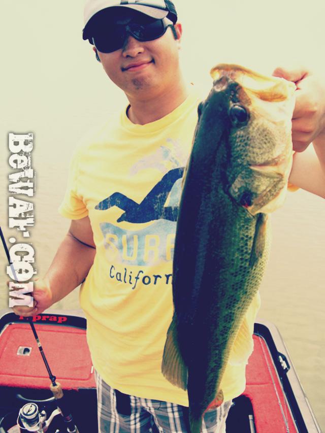 biwako nishinoko ibanaiko bass fishing guide chouka 11