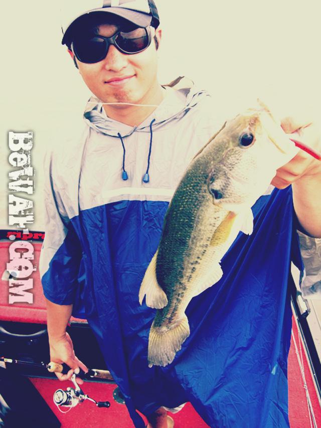biwako nishinoko ibanaiko bass fishing guide chouka 16