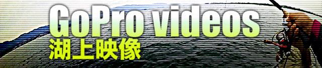 バスボート事故 ~水路で対向船とすれ違い編~ 1