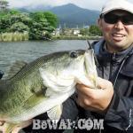 琵琶湖バスフィッシングガイドリポート ~前島様~ 50cm