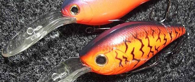 琵琶湖 おかっぱり 赤野井釣果 写真