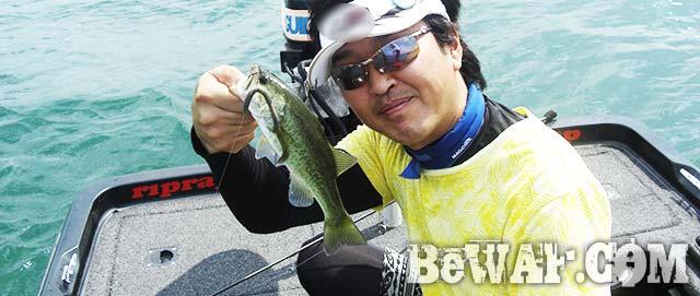 琵琶湖 夏ライトテキサス 釣果写真