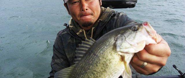 琵琶湖 秋のディープクランク 写真