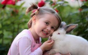 A small girl with a pet rabbit