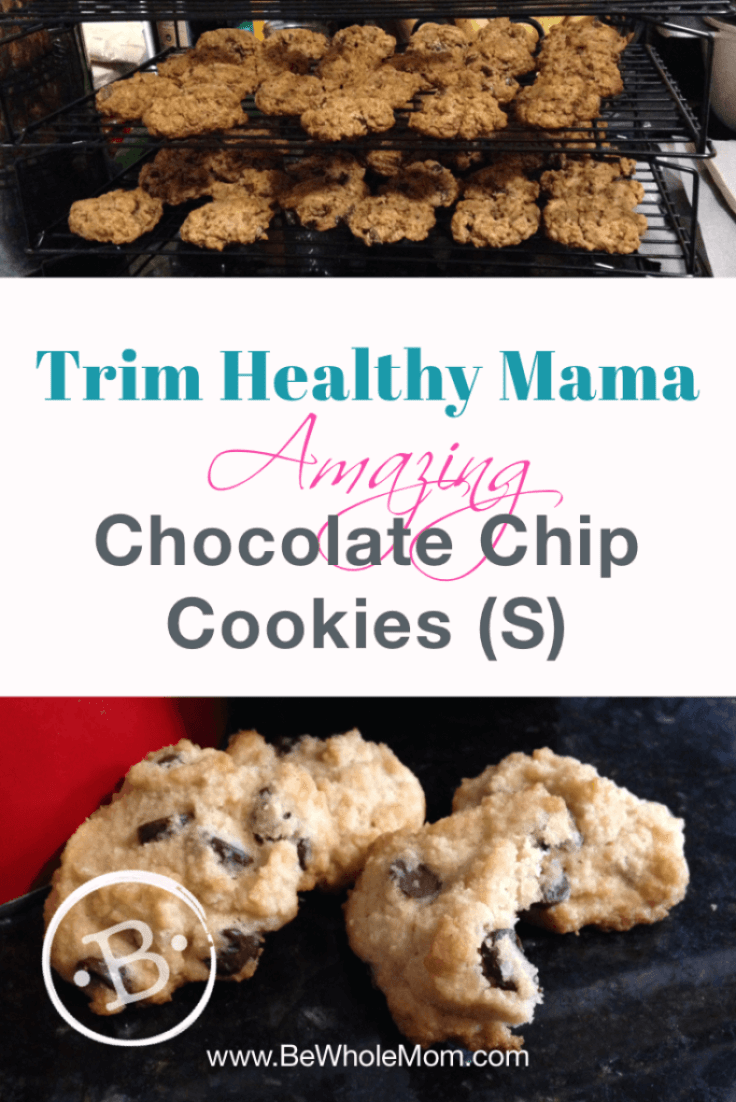 Trim Healthy Mama Amazing Chocolate Chip Cookies