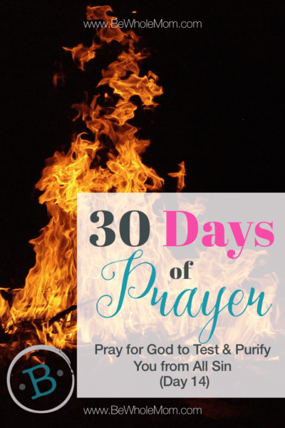 "30 days of prayer"" Pray for God to test and purify you from all sin (Day 14)"