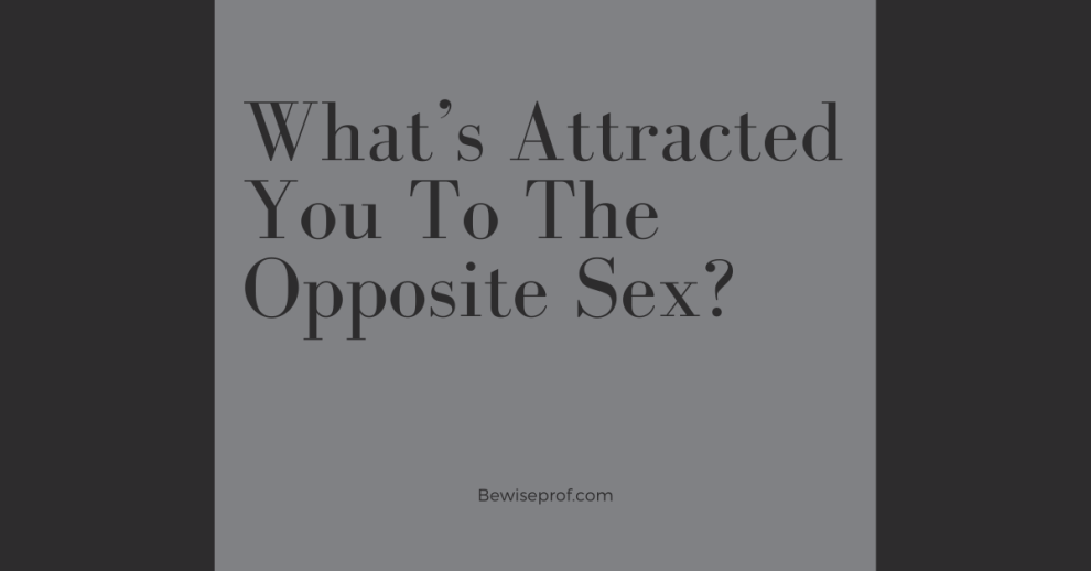 What's Attracted You To The Opposite Sex
