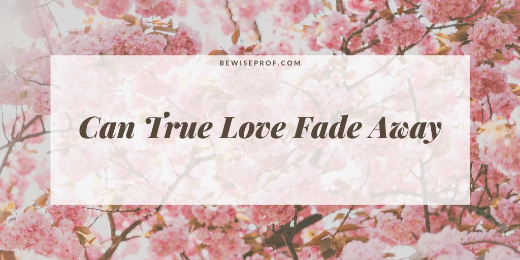 Can true love fade away
