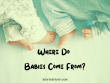 Where Do Babies Come From_