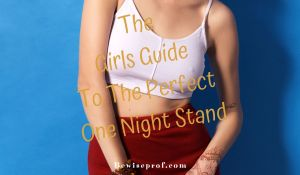 The girls guide to the perfect one night stand