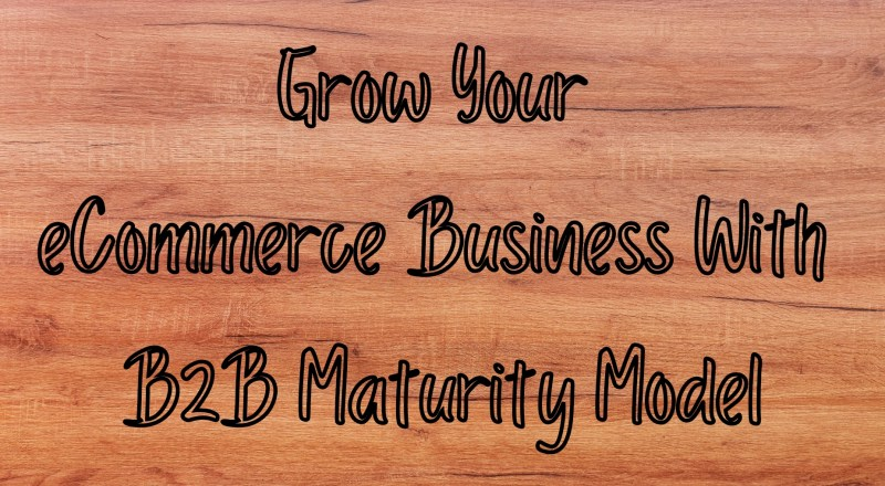 Grow Your eCommerce Business With B2B Maturity Model