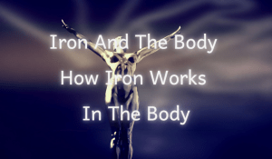 Iron And The Body: How Iron Works In The Body
