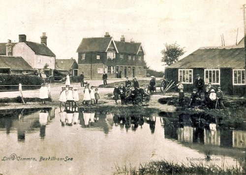 Little Common Pond c1905