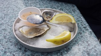 My first time trying oysters - they were actually really good