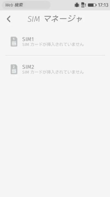 SIMマネージャの設定が2スロット分ある