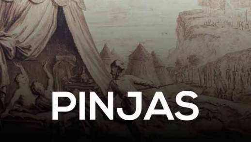41. PINJAS | FINEES