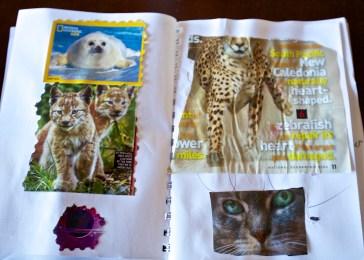 favorite magazine images