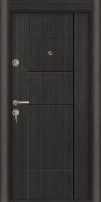 Usa Star Doors – Seria Doga – Model D-102