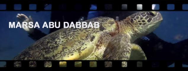 Marsa Abu Dabbab
