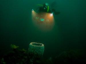 Lampen für Unterwasserfilm