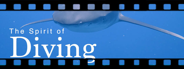 Neuer Kurzfilm: The Spirit of Diving