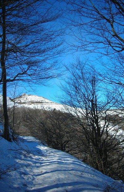 hik-Montseny (1)