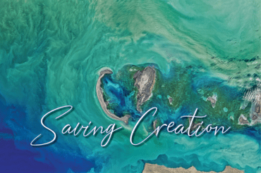 Saving Creation | For the Beauty of the Earth