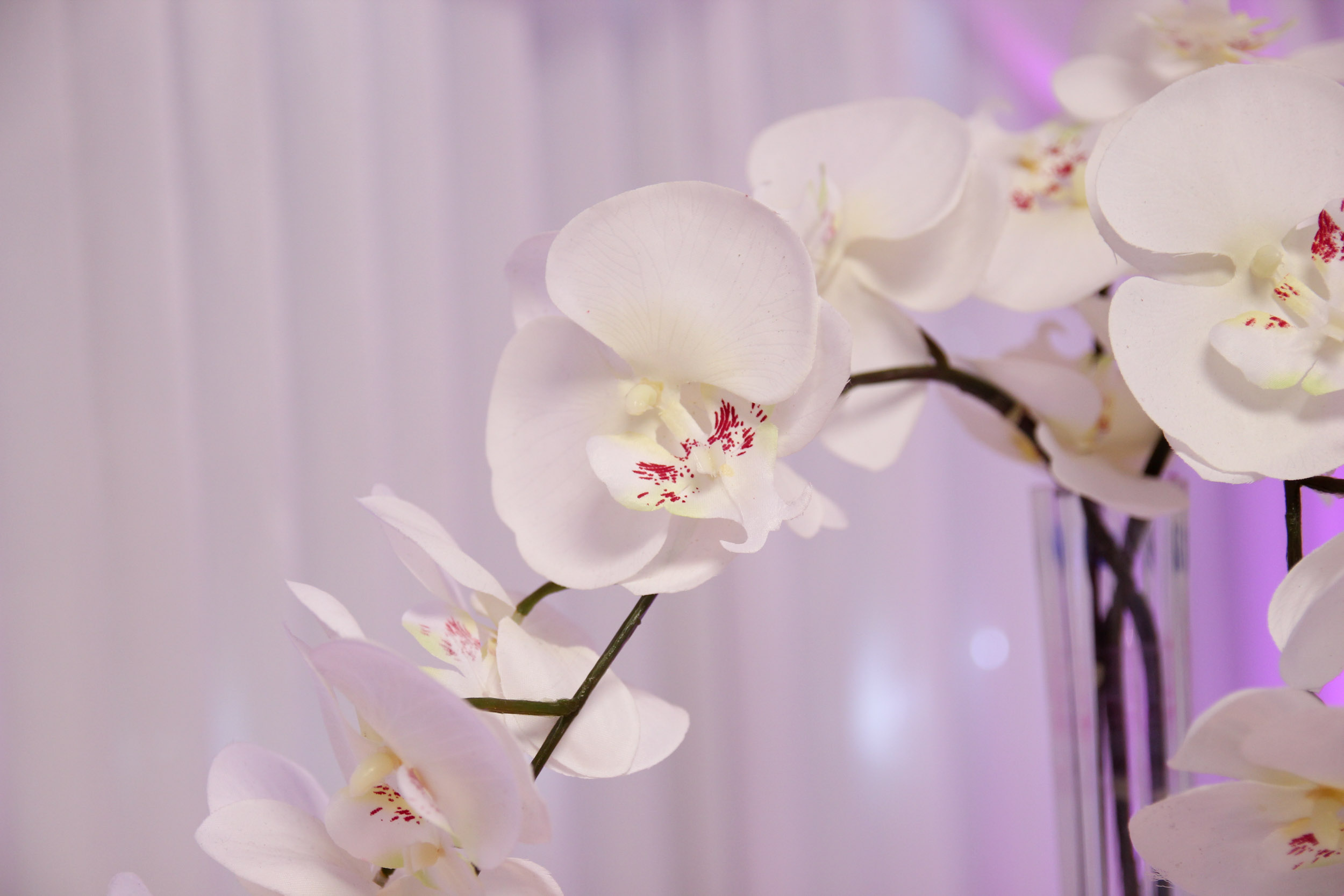 beautiful chair covers for weddings striped wingback slipcover silk orchid centrepiece - beyond expectations & events