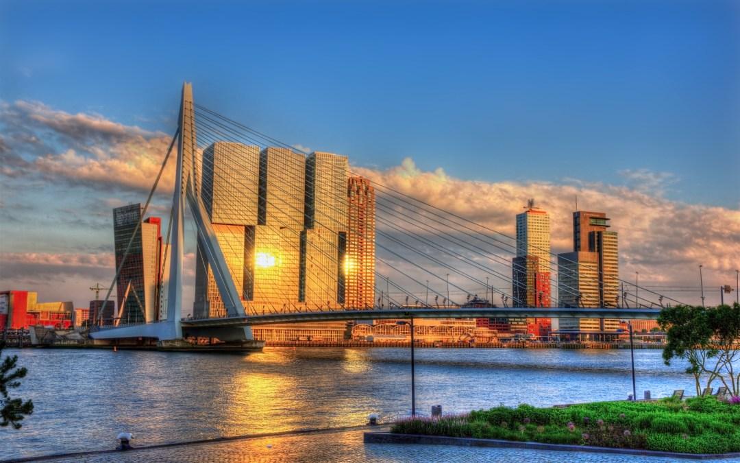 Rethinking Rotterdam: Breeding ground for circular food waste concepts