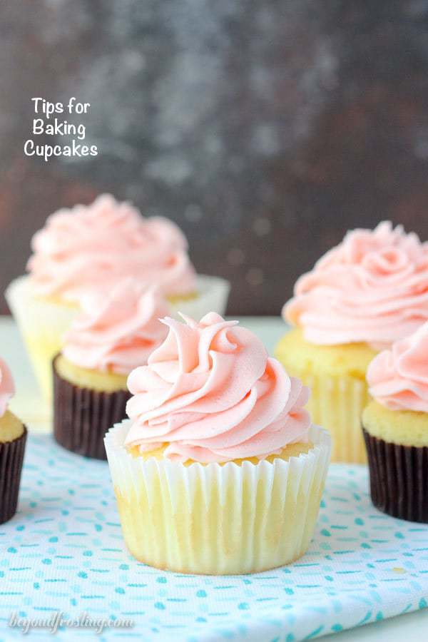 How Many Cupcakes In A Box : cupcakes, Cupcake, Research-, Bakers!, Beyond, Frosting