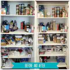 Skinny Kitchen Cabinet Black Distressed Cabinets Reorangize Your Pantry With Oxo Pop Containers