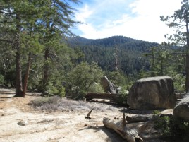 Seven Pines Trail 004