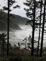 Heceta Head Trail 012