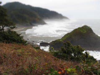 Heceta Head Trail 014