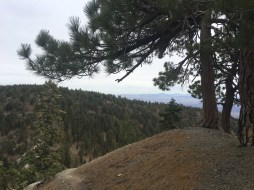 Mt. Baldy via Backbone 002