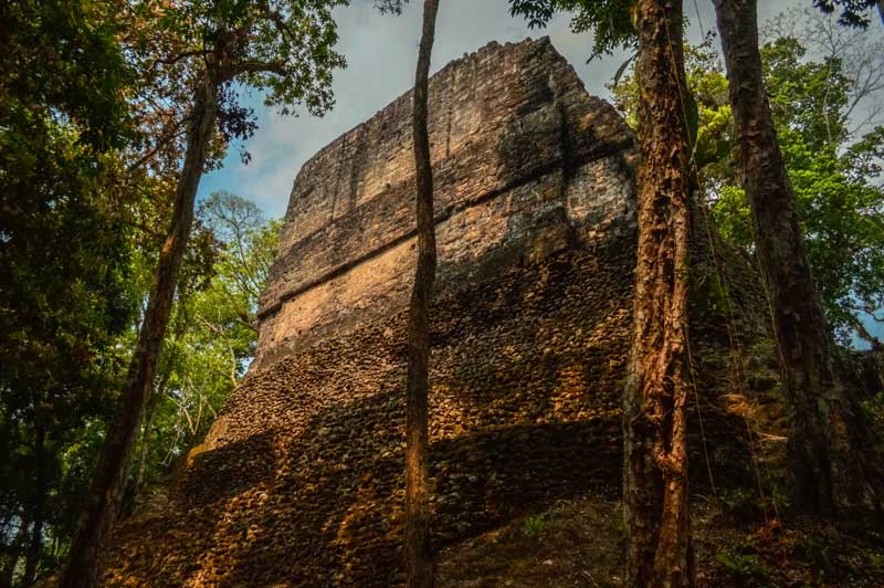Guide to Tikal National Park