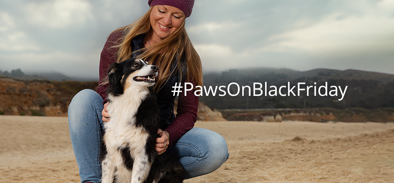 #PawsOnBlackFriday