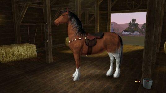 create-a-pet-pferde-15
