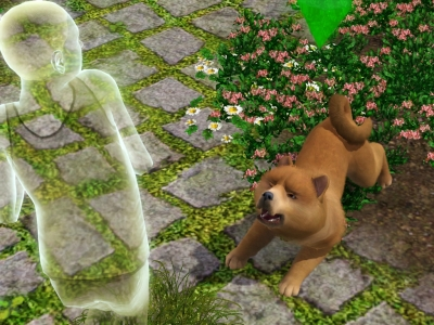 the-sims-3-pets_20111002_1130662135
