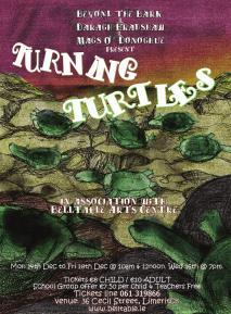 turning turtles final poster