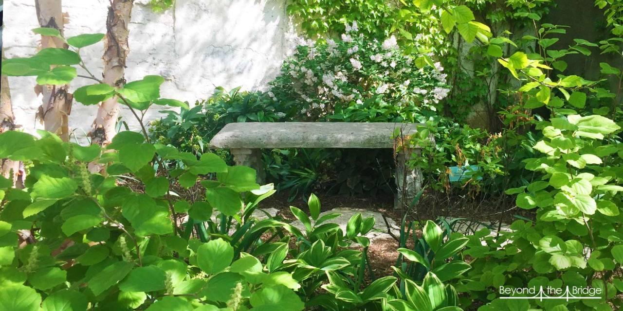Les Jardins Communautaires L Ame Verte De New York