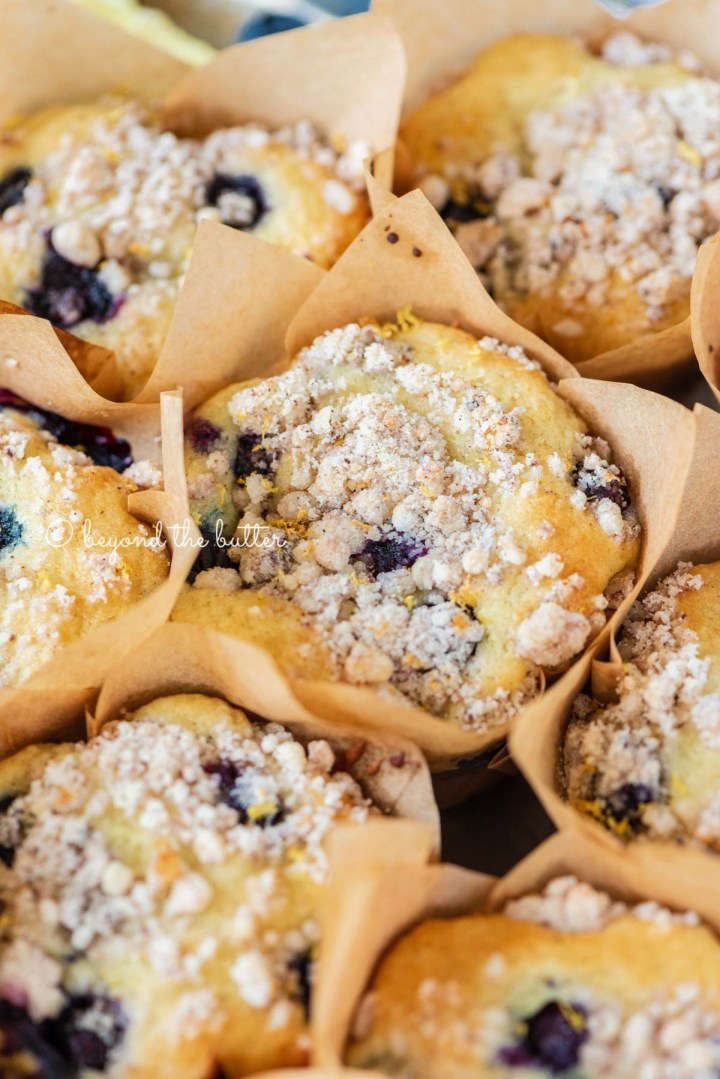 Baking tray filled with bakery style lemon blueberry muffins garnished with slices of lemons and blueberries | All images © Beyond the Butter®